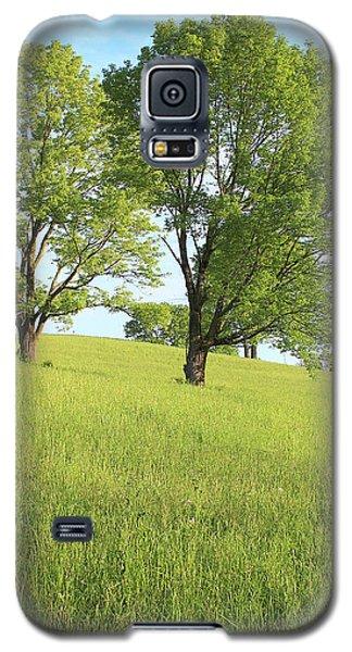 Summer Trees 2 Galaxy S5 Case