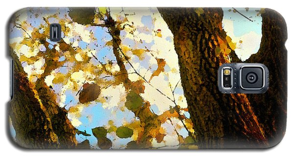 Treetop Abstract-look Up A Tree Galaxy S5 Case