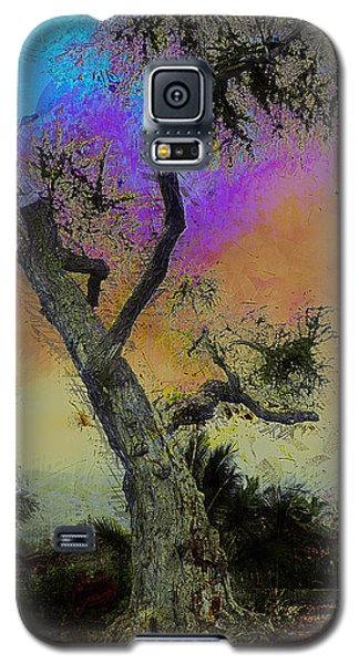 Galaxy S5 Case featuring the photograph Trembling Tree by Lori Seaman