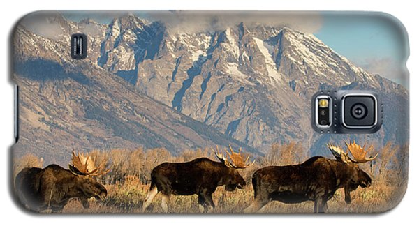 Tres Amigos Galaxy S5 Case by Aaron Whittemore