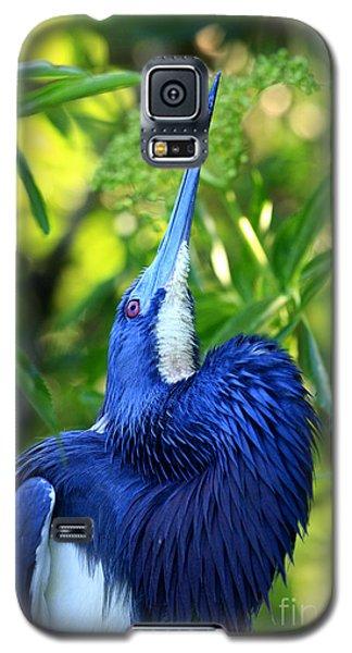 Tri-colored Heron Head Throw Galaxy S5 Case