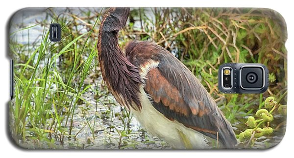 Tri-colored Heron Galaxy S5 Case