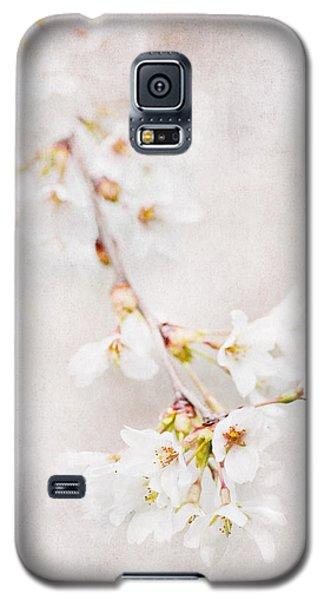 Triadelphia Galaxy S5 Case