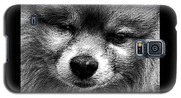 Tribute To Jojo Rip Buddy Galaxy S5 Case