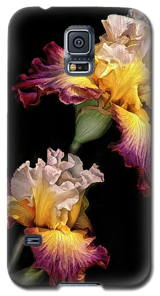 Tricolor Iris Pair Galaxy S5 Case