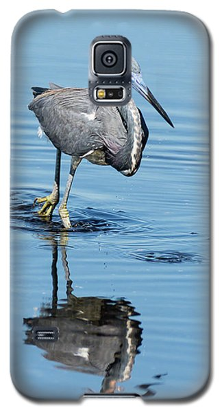 Tricolored Heron Full Tilt Galaxy S5 Case