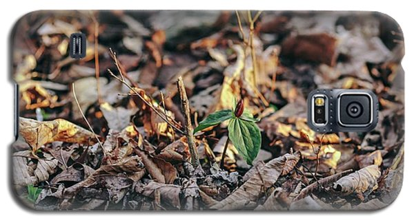 Trillium Blooming In Leaves On Forrest Floor Galaxy S5 Case