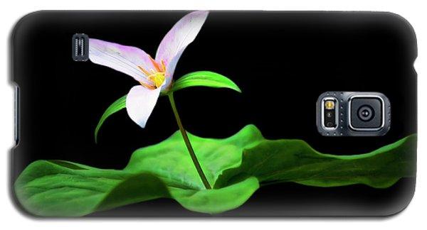 Trillium Star Galaxy S5 Case