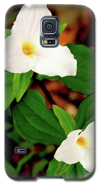 Trilliums Galaxy S5 Case