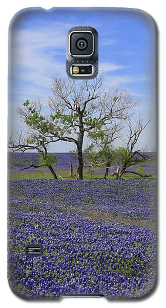 Trinity Galaxy S5 Case