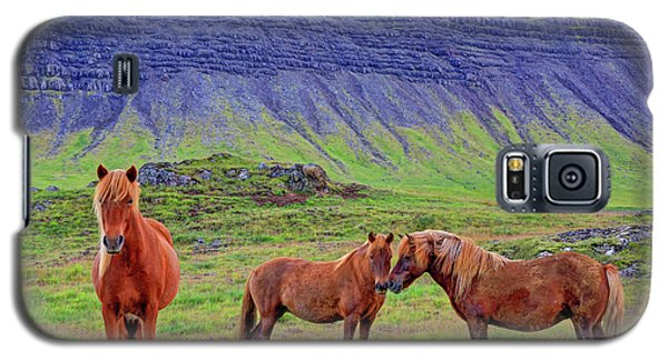 Galaxy S5 Case featuring the photograph Triple Horses by Scott Mahon