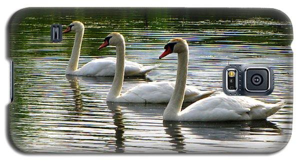 Triplet Swans Galaxy S5 Case