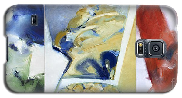 Triptych - The Keys Of Life Galaxy S5 Case