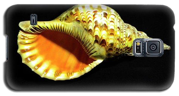 Triton Trumpet Seashell Cymatium Tritonis Galaxy S5 Case