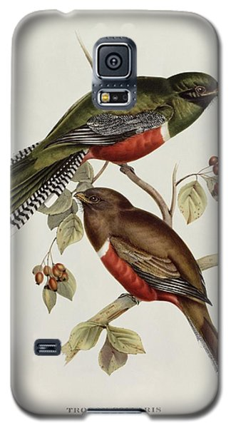Lovebird Galaxy S5 Case - Trogon Collaris by John Gould