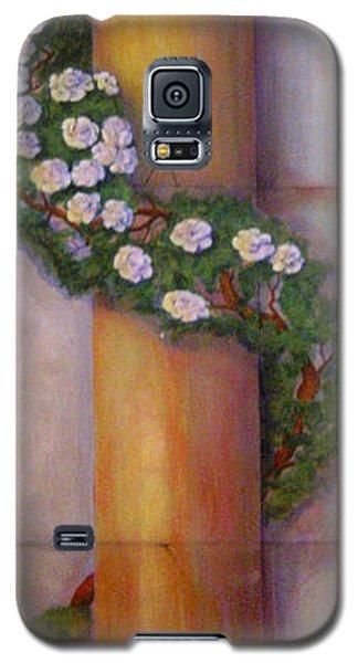 Trompe L'oeil  Column Galaxy S5 Case