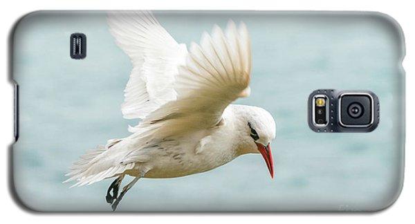 Tropic Bird 4 Galaxy S5 Case