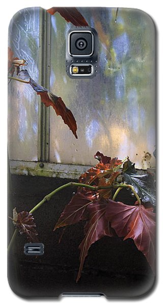 Galaxy S5 Case featuring the photograph Tropical And Humid. by Viktor Savchenko
