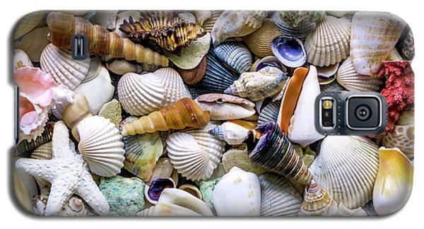 Tropical Beach Seashell Treasures 1500a Galaxy S5 Case