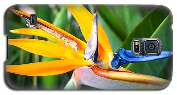 Tropical Closeup Galaxy S5 Case