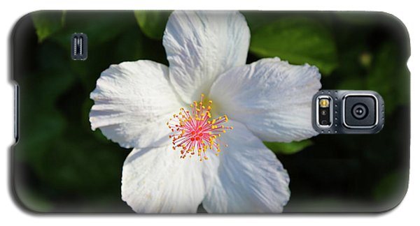 Tropical Flower 2 Galaxy S5 Case