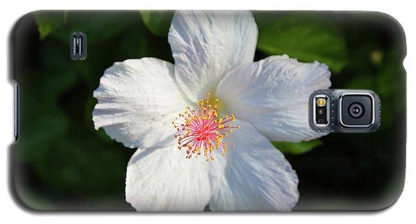 Tropical Flower 2 Galaxy S5 Case