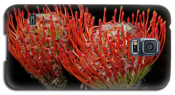 Tropical Flower Galaxy S5 Case by Elvira Ladocki