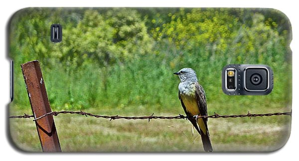 Tropical Kingbird Galaxy S5 Case