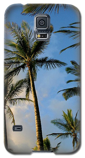 Tropical Palm Trees Of Maui Hawaii Galaxy S5 Case