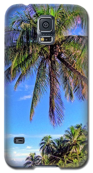 Tropical Palms Galaxy S5 Case by Sue Melvin