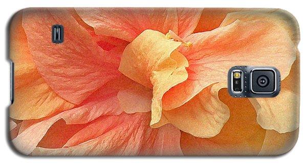 Tropical Peach Hibiscus Flower Galaxy S5 Case by Deborah Smith