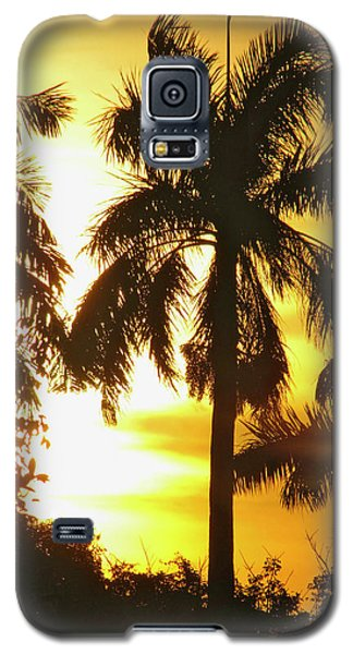 Tropical Sunset Palm Galaxy S5 Case