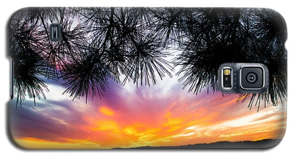 Tropical Sunset  Galaxy S5 Case by Parker Cunningham