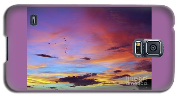Tropical North Queensland Sunset Splendor  Galaxy S5 Case