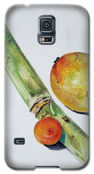 Tropical Trio Galaxy S5 Case by Sheron Petrie