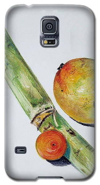 Tropical Trio Galaxy S5 Case