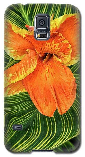 Tropicanna Beauty Galaxy S5 Case