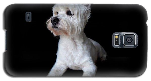 Trot Posing Galaxy S5 Case