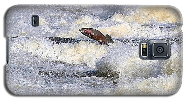 Trout Galaxy S5 Case by Robert Pearson