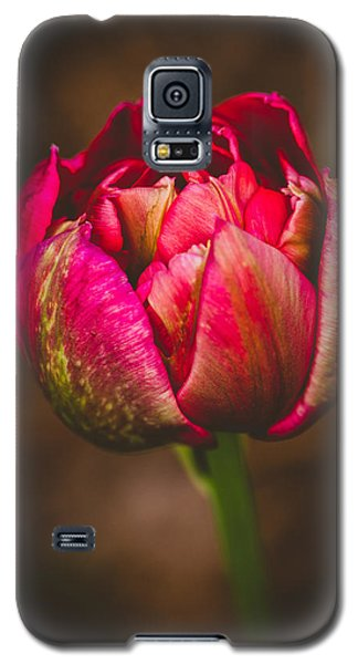Galaxy S5 Case featuring the photograph True Colors by Yvette Van Teeffelen