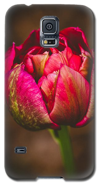 True Colors Galaxy S5 Case by Yvette Van Teeffelen