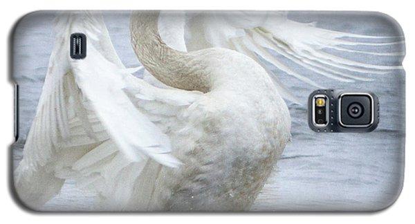 Trumpeter Swan - Misty Display 2 Galaxy S5 Case