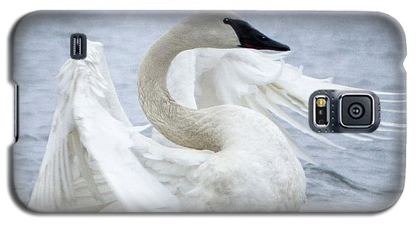 Trumpeter Swan - Misty Display 2 Galaxy S5 Case