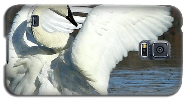 Galaxy S5 Case featuring the photograph Trumpeter Swan by Paula Guttilla