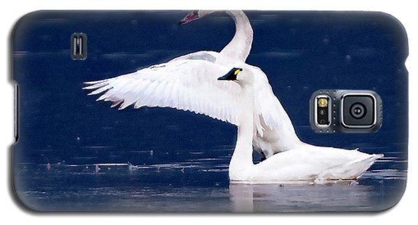 Trumpeter Swans Galaxy S5 Case