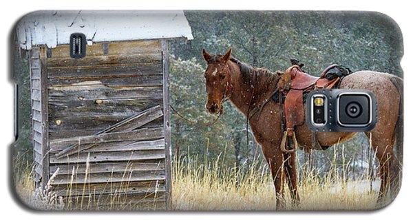 Trusty Horse  Galaxy S5 Case