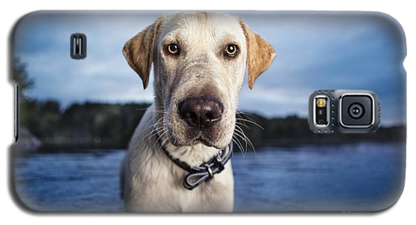Galaxy S5 Case featuring the photograph Tucker by Leslie Leda