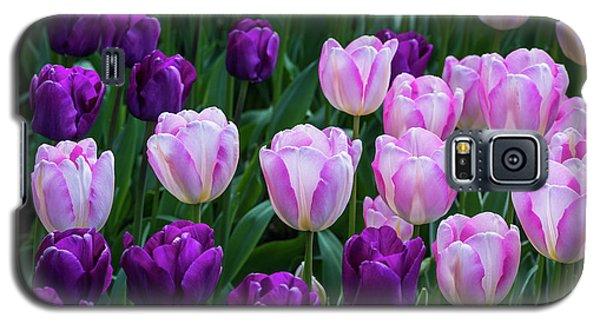 Tulip Blush Galaxy S5 Case