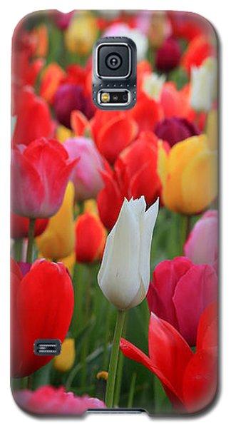 Tulip Color Mix Galaxy S5 Case