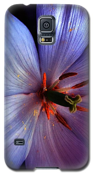 Galaxy S5 Case featuring the photograph Tulip Convert by Gwyn Newcombe